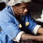 Experienced vanilla worker